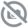 Rental car seat rear-facing